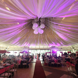 Sensitivity Lights and Sounds: Making Fairy Tale Weddings Come True