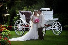 Wedding Photo by Smart Shot Studio