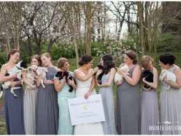 meghan butler pup themed wedding photo