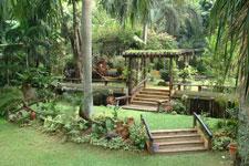 Jardin de Miramar