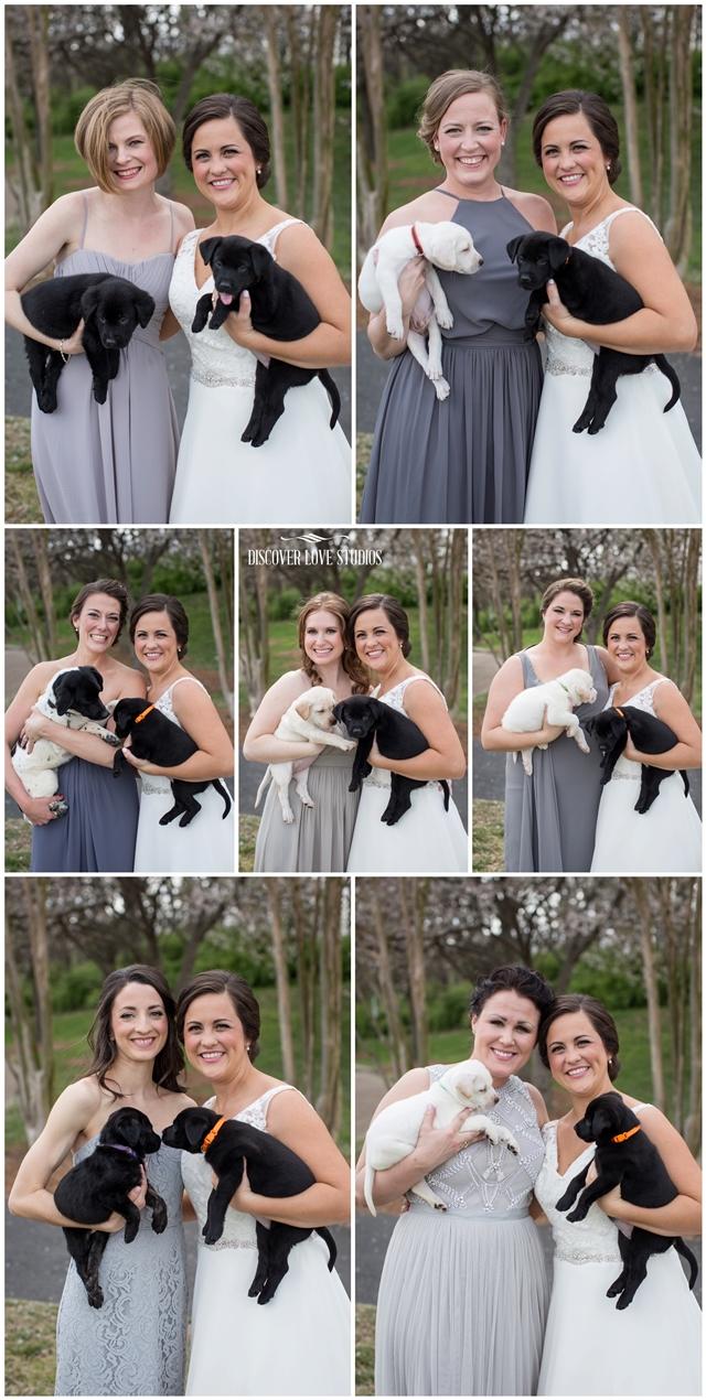 meghan butler pup themed wedding photo